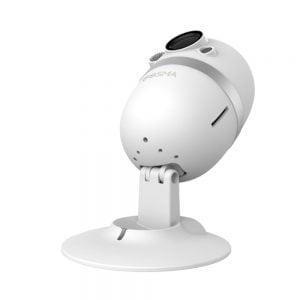 Bosma Mini CapsuleCam angle